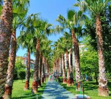 Gardenia Beach Hotel in Alanya, Antalya, Turkey