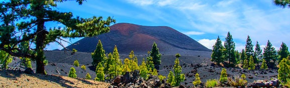 Christmas Holidays to the Canary Islands
